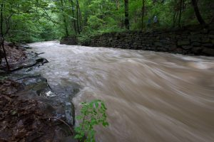 Tracing the Doan Brook from the Heights to Lake Erie
