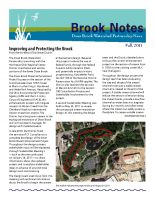 fall 2011 Brook Notes