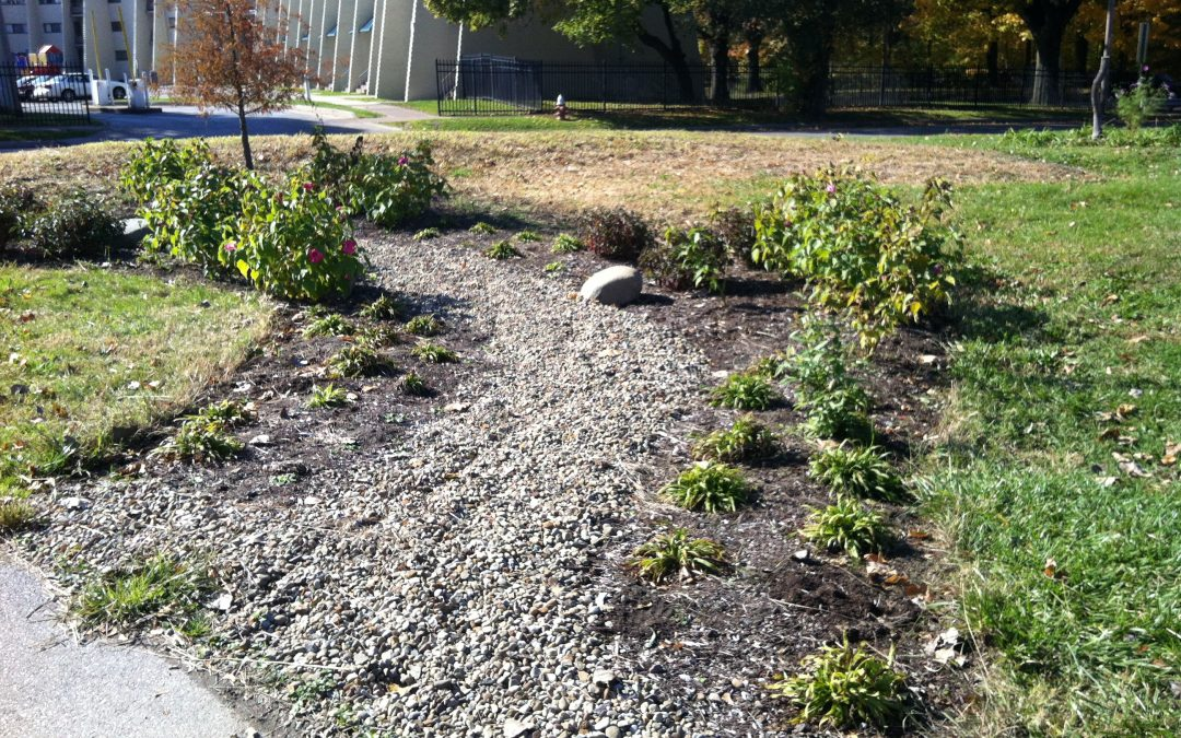 Greenscout Rain Gardens at Ashbury Greenway