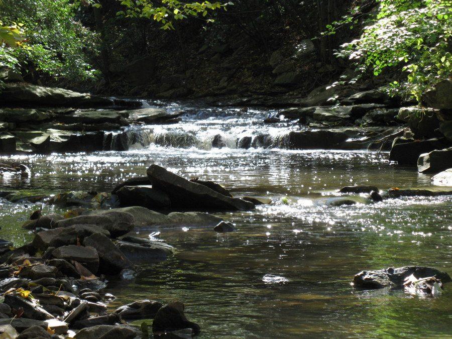 Rocks & Waters