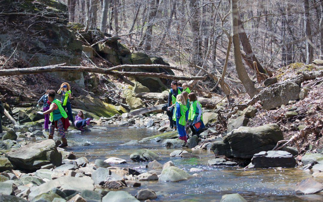Doan Brook Gorge Stream Sweep