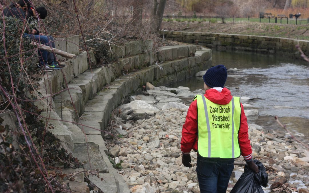 Rockefeller Park Stream Sweep